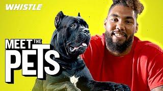 Pro Bowler Leonard Williams Is A GIANT Dog Lover!