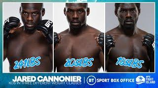 Jared Cannonier has knockouts in three different UFC weight classes