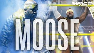 Moose NEW Theme Song & Entrance Video | IMPACT Wrestling Theme Songs