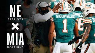 """""""Great day to be a fin, baby."""" 
