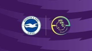 Brighton & Hove Albion EPL Play-offs Live!