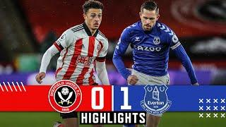 Sheffield United 0-1 Everton | Premier League highlights | Sigurdsson goal downs Sheff Utd